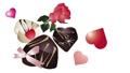 心形心形和大理石巧克力玫瑰花朵插画圈素材 60728396