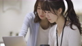 ノートパソコンで仕事をしている二人の女性 61033955