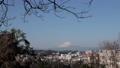 富士山 鎌倉梶原住宅から撮影 61057099