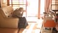孤独な高齢者 高齢者 後期高齢者 90代 シニア 老人 介護 老々介護 ベッド 61112905