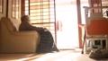 孤独な高齢者 高齢者 後期高齢者 90代 シニア 老人 介護 老々介護 ベッド 61112907