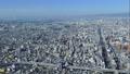 【大阪のビジネス街】 (time lapse) 大阪府大阪市阿倍野区阿倍野筋1 61151013