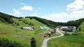 夏の高原 ドローン空撮影像 長野県大町市 61200748