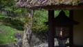 白馬村  大出の吊り橋 春 雪解け水流れる姫川 61200994