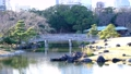橋のかかる日本庭園 61218450