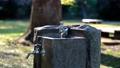 公園の水飲み場 61218456