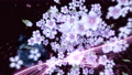 桜と墨のスパーク ループ 61277652