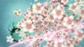 桜と墨のスパーク ループ 61277661