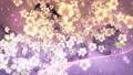 桜と墨のスパーク ループ 61277681