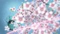 桜と墨のスパーク ループ 61277684