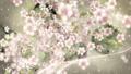 桜と墨のスパーク ループ 61277686