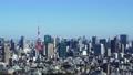 東京タワーとビル群 2020冬 パン 61301349