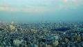 2020 Tokyo Sky Tree and Townscape Time Lapse 61434673