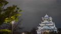 大阪城の夜景タイムラプス動画 61631553
