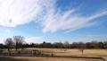 白雲が動く公園の風景(タイムラプス) 61825360
