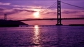 夕日の映える明石海峡大橋 62326554