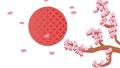 ดอกซากุระสไตล์ญี่ปุ่นพระอาทิตย์ขึ้นลวดลายญี่ปุ่นแนวคลื่นสีทองขนาดใหญ่ 62342285
