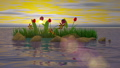 Flowers and stones in the water at sunset background. 3D render 62548749
