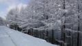 Winter view of Hambaeksan 62599618