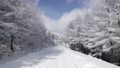 Winter view of Hambaeksan 62599619