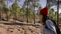Woman hiking in the forest highly in the mountains on a volcanic rocks 63174996