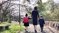 入学イメージ一年生ランドセル親子入園桜 63695957