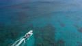 珊瑚礁を進む船 クルーザー 青い海 63702102