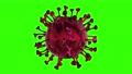 Microscope virus cell. Pandemic bacteria pathogen medical health risk, Corona COVID-19 Alert SOS, immunology, virology, epidemiology concept. 3D rendering looped animation. 63847442