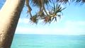 Bibi Beach in Itoman 63938138