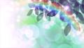 虹 小雨 木漏れ日 キラキラ パーティクル CG背景 ループ 63989755