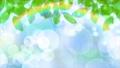 虹 小雨 キラキラ パーティクル CG背景 ループ 63989797