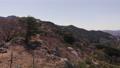 大岩山頂的櫻花 64116482