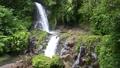 Beautiful waterfall in Bali, Indonesia. 64262621