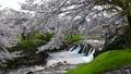 布橋十二ヶ滝(ぬのはしじゅうにがたき)/石川県小松市 西尾地区  64359204