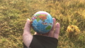 Female holding global earth in her hand, against yellow grass, ecology concept, human impact, save 64714141