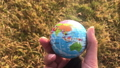 Female holding global earth in her hand, against yellow grass, ecology concept, human impact, save 64714143