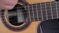 ガットギター演奏 64814214
