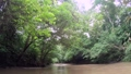 Paya River And Rainforest Jungle Rain Forest Darien National Park Panama 65003509