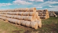 Aerial view a Hay bales are stacked large stacks. Hay bales straw storage shed full of bales hay on agricultural farm. Harvesting in agriculture. 65030508