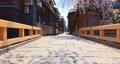 4K 日本 京都 祇園 美しい古都 電動ジンバルで撮影,滑らかで浮遊する動き 65031768