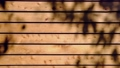 Wooden background and textured with shadow of leaves 65082160