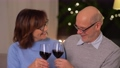 happy senior couple with glasses of red wine 65108629