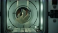 astronaut inside the orbital space station 65360914