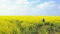 happy girl enjoying at the rapeseed field 12 65453924