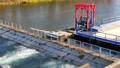 インディアン水車 4K 65502388