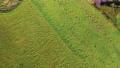草原 北海道 回転 イメージ映像 ドローン 4K 65637354