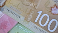 Canadian 100 Dollars close up. CAD currency. 65649033