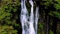 神庭の滝【岡山県真庭市】 65656328