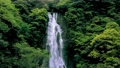神庭の滝【岡山県真庭市】 65656330