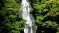 神庭の滝【岡山県真庭市】 65656331